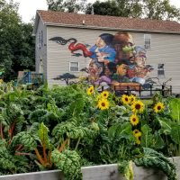A house with a painted mural on its side, with a lush garden bed in the foreground